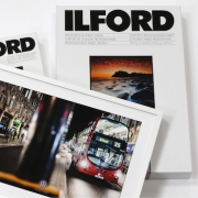 low_ilford-studio